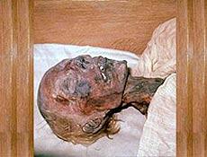 A venda das mechas do faraó foi descoberta com o anúncio no site www.vivastreet.fr