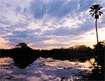 Poente no Pantanal sul-matogrossense