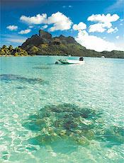 Mergulho em Tahaa, que tem lagoa rica em vida marítima