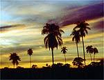 Céu assume várias cores durante o fim da tarde