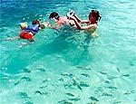 Litoral de Alagoas é indicado para quem adora mergulhar