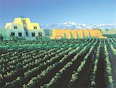 Vista da vinícola Catena (Mendoza, Argentina)