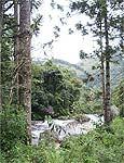 Circuito das cachoeiras tem trilhas dentro e fora da água
