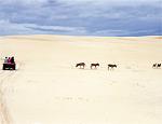 Tour de buggy sobre as dunas de Aracati, no Ceará