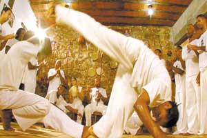 gratis mestre bimba a capoeira iluminada
