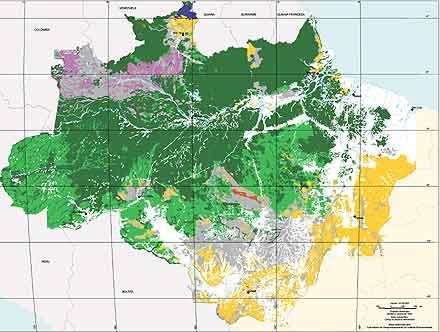 Folha De Spaulo Amazônia é Um Mosaico Não Uma Floresta